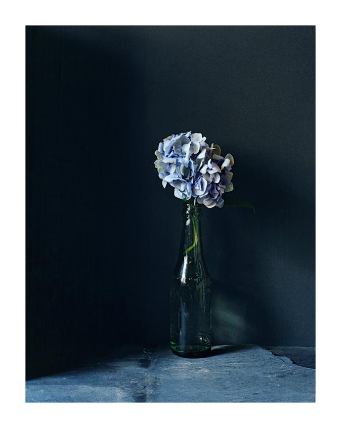 Hydrangea From Dylan Thomas's Garden by Hugh Stewart, from $1,100.