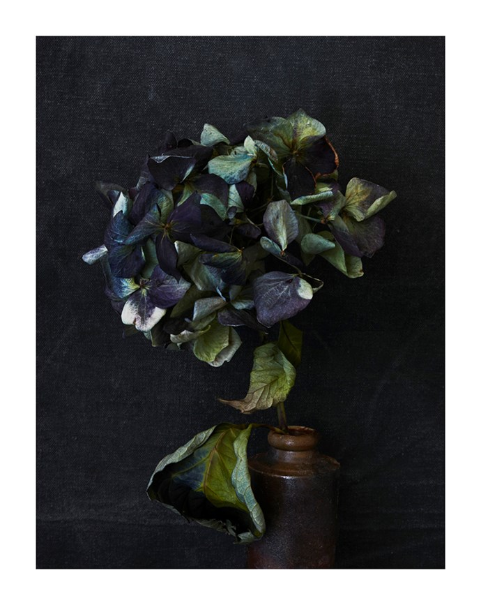 Hydrangea in Ceramic Bottle by Hugh Stewart, from $1,100.