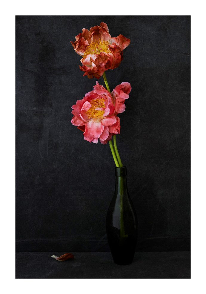 Peonies in Green Bottle by Hugh Stewart, from $1,100.