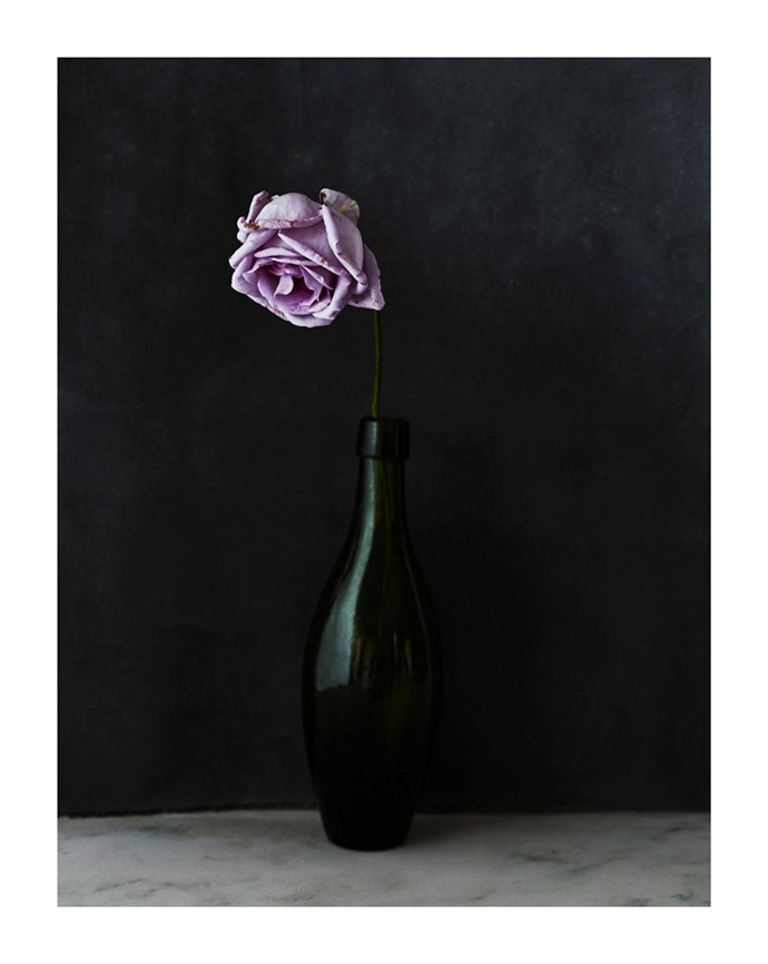 Rose in Green Bottle by Hugh Stewart, from $1,100.