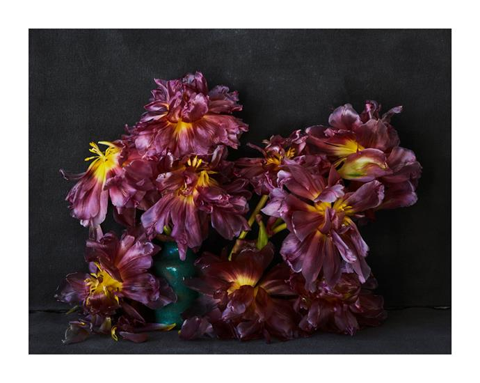 Tulips in inkwell from Marrakech by Hugh Stewart, from $1,100.