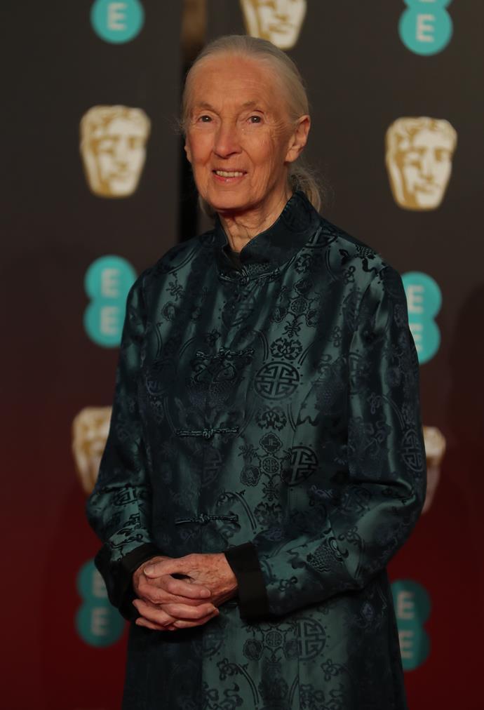 Scientist Dame Jane Goodall