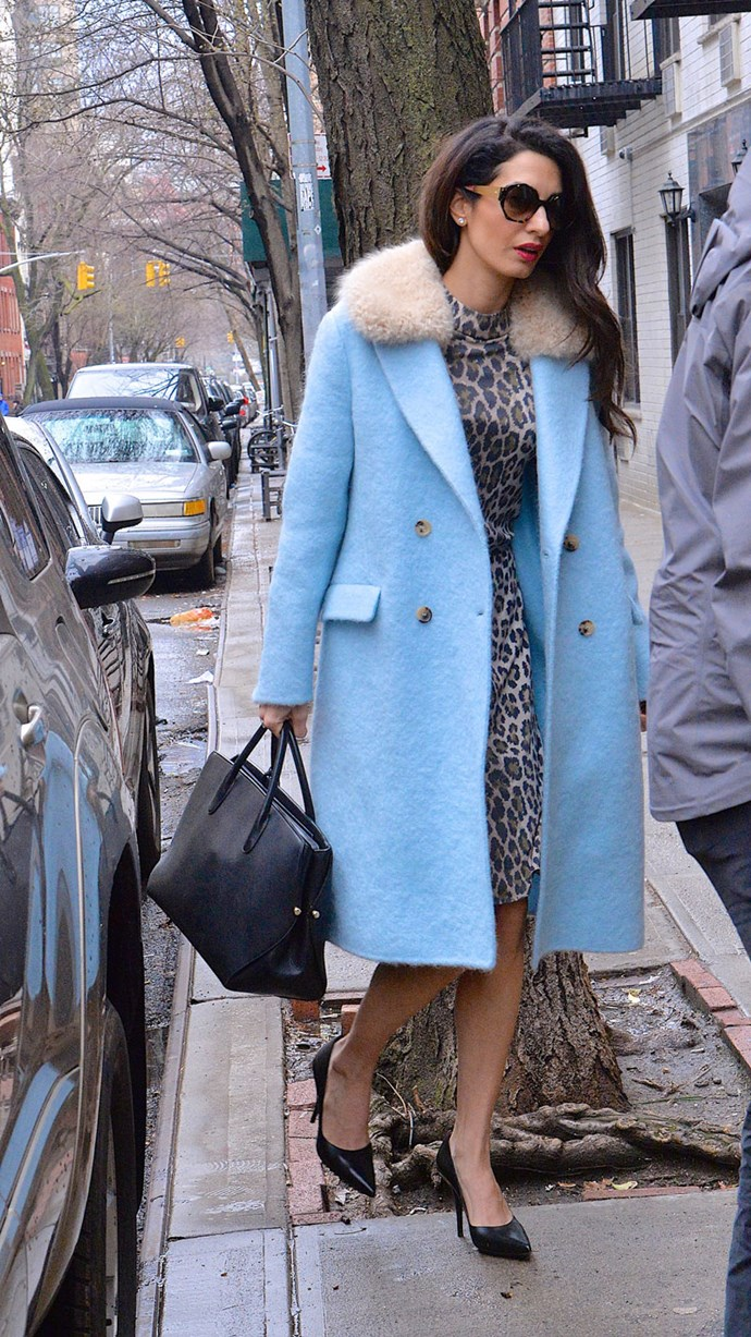 Amal Clooney made a case for leopard print in New York City, wearing a knee-length shift dress under a powder blue coat, complete with fur trim collar.