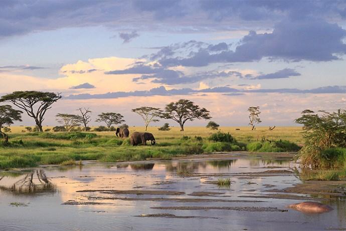 **9. Tanzania**