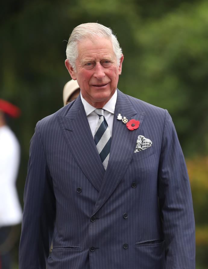 """**Charles, Prince of Wales**<bR><Br> *$556 million AUD*<br><br> When you're the direct heir to the throne of England, you get more than a fancy title and an appealing promotion. As Prince of Wales, Charles holds the duchies of Cornwall and Rothesay, which have substantial assets. From property, to agriculture, to a hefty investment portfolio, Charles' yearly revenue is lucrative and comes in at [around](https://www.townandcountrymag.com/society/money-and-power/a22667018/royal-family-net-worth/ target=""""_blank"""" rel=""""nofollow"""") $556 million AUD. (Which makes sense, considering it's Charles that deals out money for clothes and trips to his sons and their wives.)"""