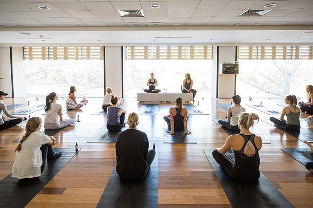 """[**Flow Athletic**](https://flowathletic.com.au/