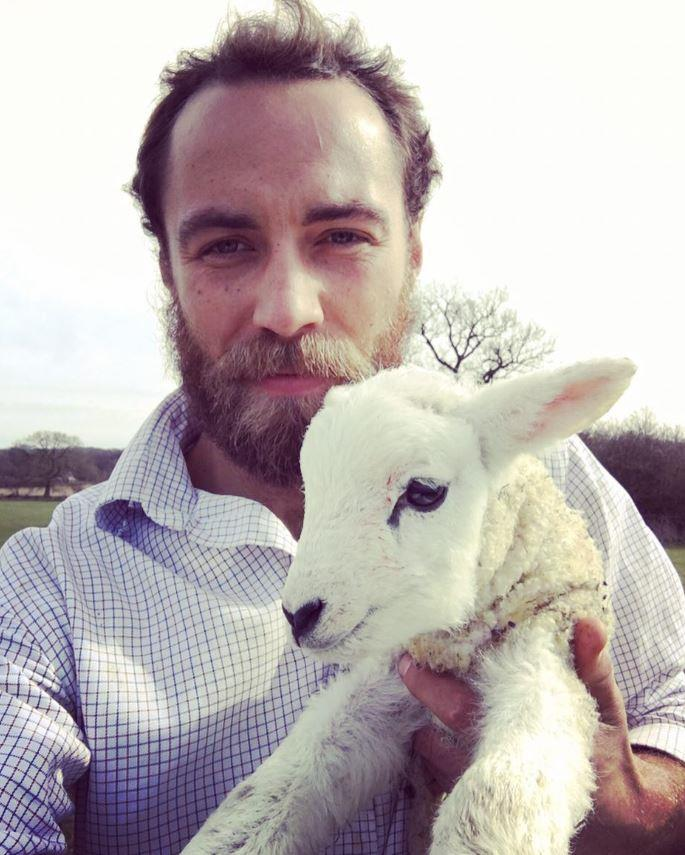 Taking a selfie with a lamb.