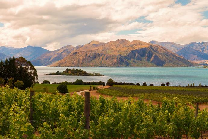 "***Wanaka, New Zealand***<br><br> **Why Wanaka?** Just a jump over the Tasman, Wanaka is a little out from Queenstown and home to stunning views. Make like Nicole Warne—AKA Gary Pepper Girl—and marry on top of *that* famous ridge, or choose to drive down to the river for an idyllic view. Whether in winter, with snow-topped mountains, or autumn with falling leaves, Wanaka is a breathtaking choice. <br><br> **Wedding locations in Wanaka:** Despite not being a very big town, Wanaka is home to quite a few luxury stays. You can host your nuptials either in nature—mountains, rivers, lakes, ridges, take your pick—or in a hall or church. <br><br> **Guests in Wanaka:** If your chosen location doesn't allow for guests or simply isn't big enough, guests can stay in nearby Queenstown and commute in for the big day.<br><br> **Our location recommendation:** Equal parts rustic and upscale, [Rippon Hall](https://www.theripponhall.co.nz/|target=""_blank""