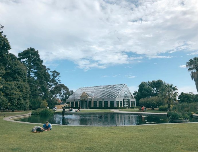 """**[St Kilda Botanical Gardens](http://www.portphillip.vic.gov.au/st_kilda_botanic.htm