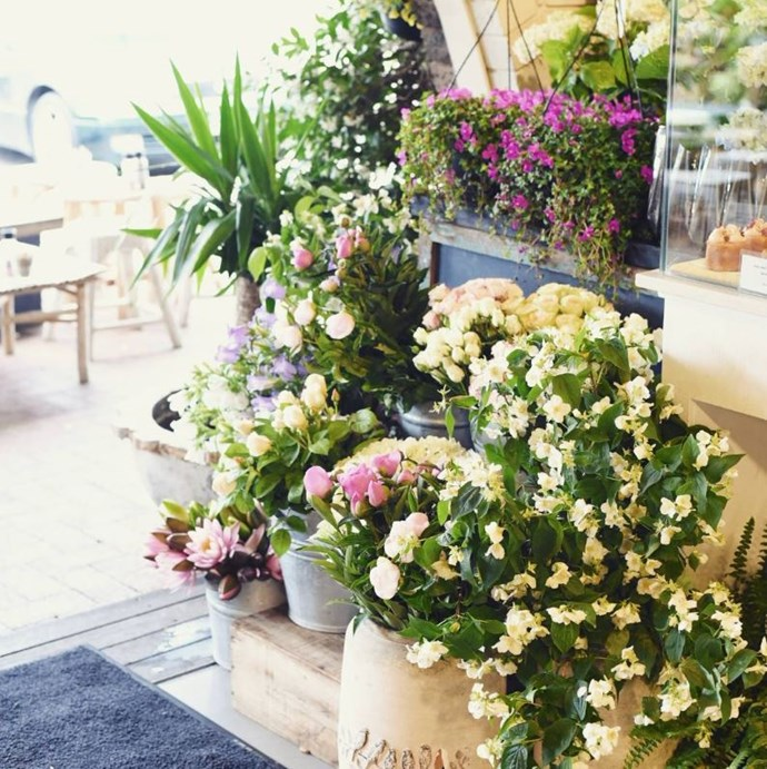 """**[Armchair Collective](http://www.thearmchair.com.au/ target=""""_blank"""" rel=""""nofollow"""")** <br><br> **Location:** Mona Vale <br><br> Enjoy your breakfast among fresh flowers and cosy homewares at this restored furniture shop-turned-florist-turned-cafe. The vibe is relaxed, comfortable and exceedingly well-decorated, leaving you feeling like your brunching at the home of a good friend with excellent taste in decor. <br><br> [@armchaircollective](https://www.instagram.com/armchaircollective/?hl=en target=""""_blank"""" rel=""""nofollow"""")"""