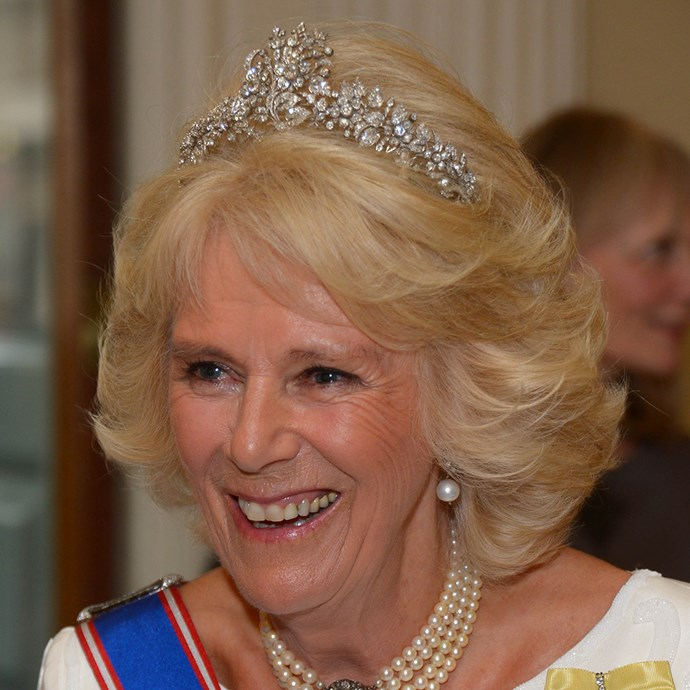 **The tiara:** The Cubitt-Shand Tiara.<br><br> **The history:** One of the smaller tiaras Camilla, Duchess of Cornwall, wears, this piece has a strong nature theme and belonged to the Duchess' grandmother, Sonia Keppel.<br><br> **The current wearer:** Camilla, Duchess of Cornwall.<br><br>