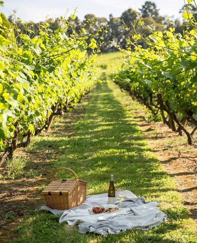 """***[Lindenderry, Mornington Peninsula](https://www.lancemore.com.au/lindenderry