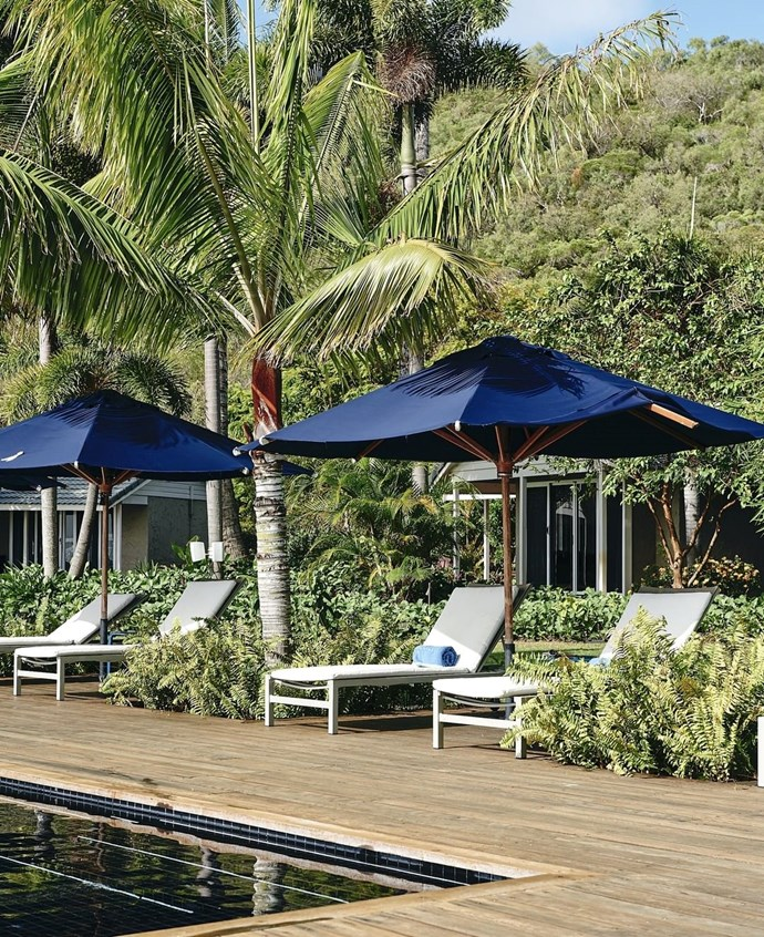 """***[Orpheus Island](https://www.orpheus.com.au/