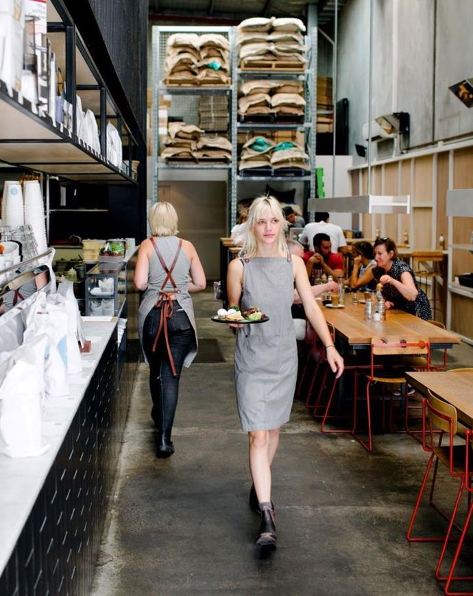"**[Industry Beans](https://industrybeans.com/|target=""_blank""