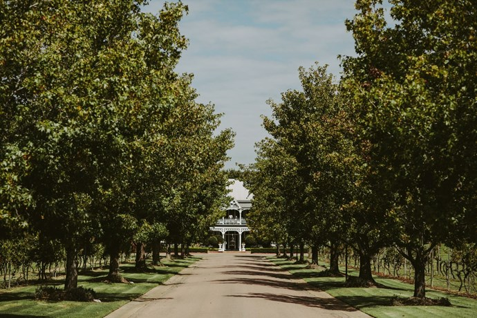 **On the significance of the location:** Josh and I have had a lot of amazing weekends in the Hunter Valley and we both agreed early on that we wanted to bring our family and friends there for a destination wedding weekend. We made the most of it and both hosted pre-events with our bridesmaids and groomsmen and a two stage recovery day.