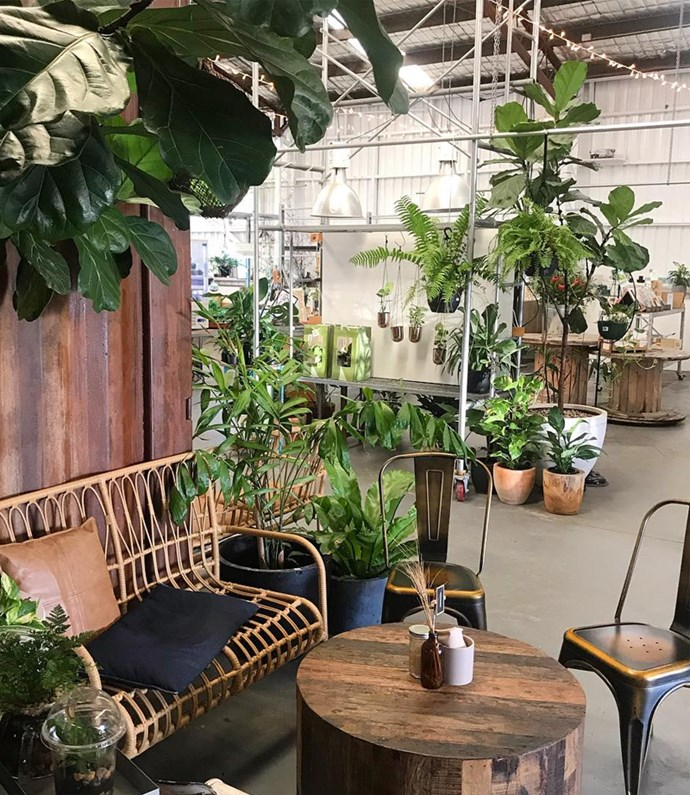 """**[Soul Pantry](https://www.thesoulpantry.com.au/