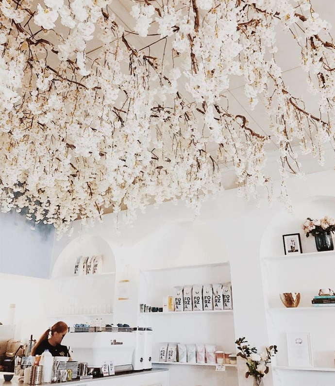 """**[The Bloom Room](http://thebloomroomcafe.com.au/