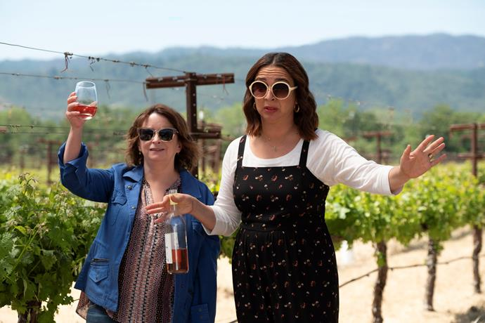 **Wine Country (10/05/2019)** <br><br> During a vacation to Napa Valley, a group of long time friends reunite and revisit past choices in this hilarious and heartfelt comedy from director Amy Poehler.