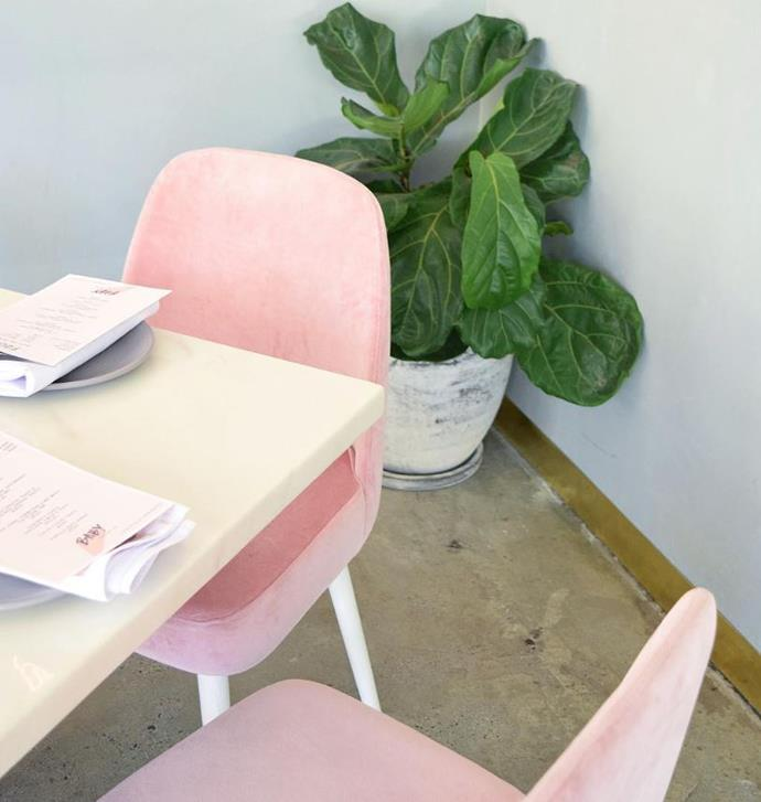 "**[Baby Coffee Co](https://www.babycoffeeco.com.au/|target=""_blank""