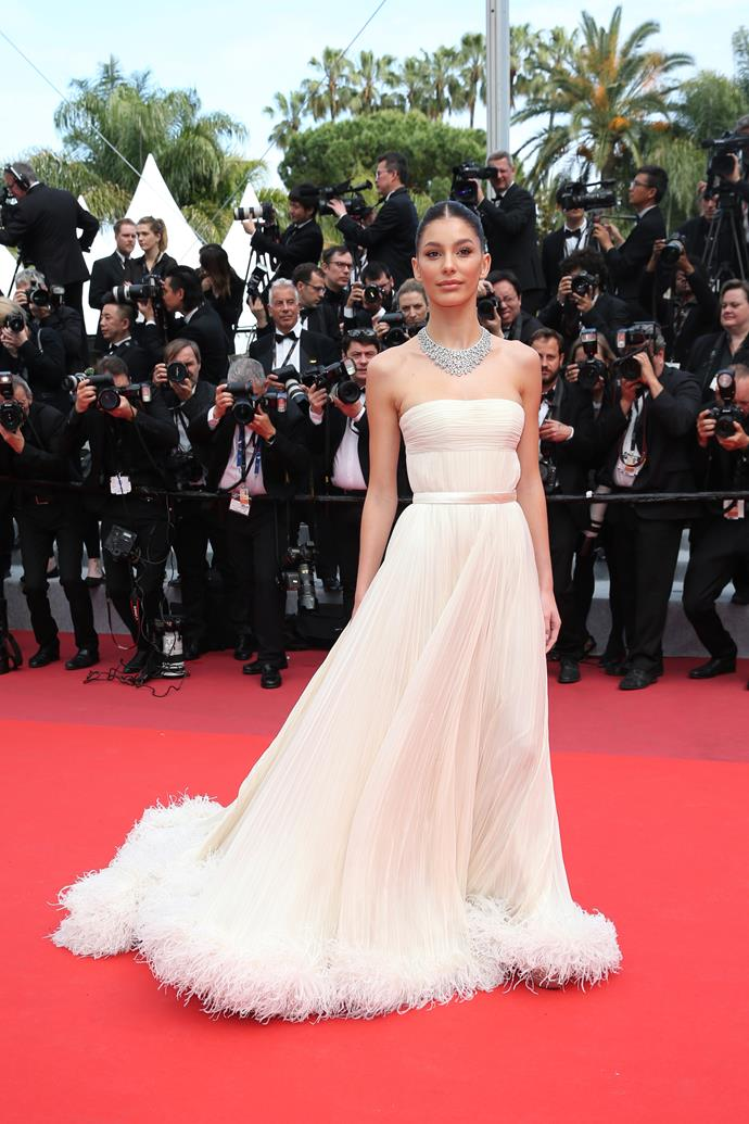 **Level 1:** Camila Morrone wearing Miu Miu at the 2019 Cannes Film Festival<br><br>  Morrone's Miu Miu gown makes a solid debut into the realm of feather dresses with a simple yet stunning hemline.