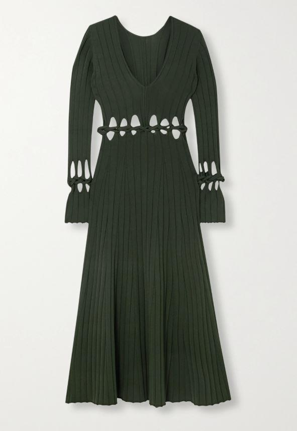 """Radiance cutout ribbed stretch-knit maxi dress, $1,585 by Dion Lee at [Net-A-porter](https://www.net-a-porter.com/en-au/shop/product/dion-lee/radiance-cutout-ribbed-stretch-knit-maxi-dress/1232053