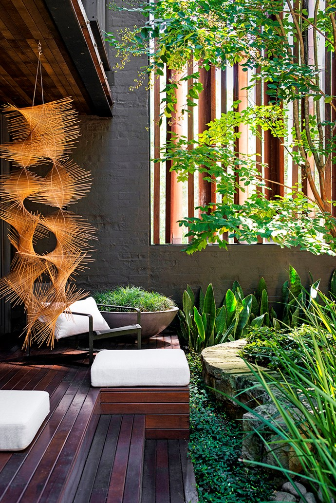 A hanging reed sculpture by Tracey Deep enlivens the atrium. To soften the sandstone wall that snakes through the space, Richard has planted a variety of foliage plants including strappy wild iris, mounds of Pittosporum 'Miss Muffet' and long-leafed *Sansevieria* 'Congo'. The groundcover is *Trachelospermum asiaticum* (Japanese star jasmine) and the concrete bowl is planted with mondo grass.