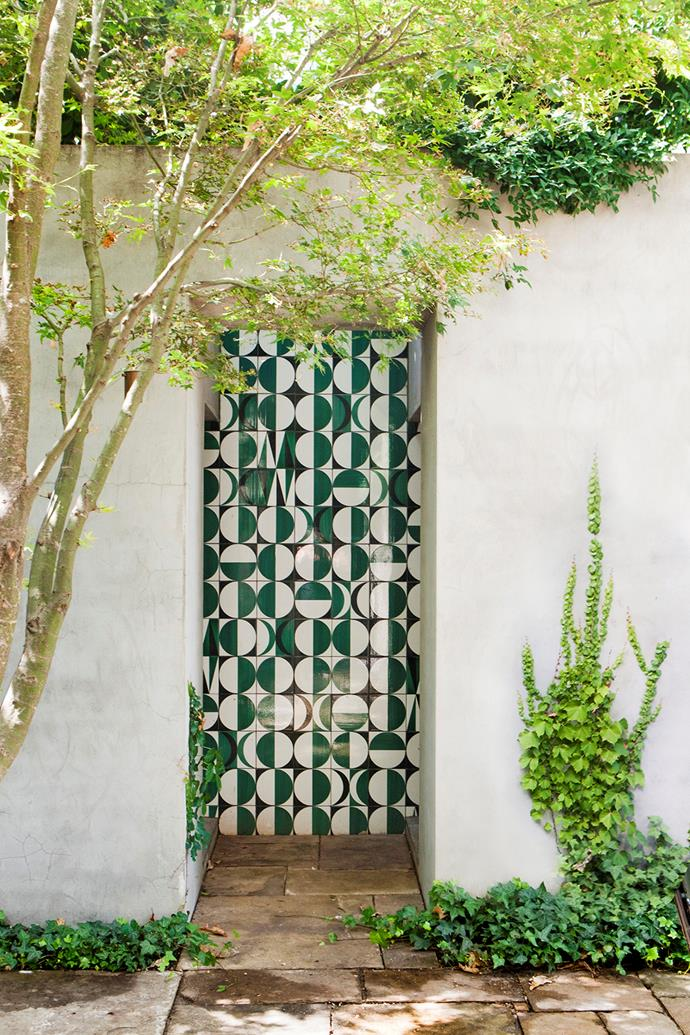 A geometric tiled wall catches the eye. The layered planting scheme also extends to the vertical surfaces in the garden. On the courtyard walls English ivy (*Hedera helix*) and Boston ivy (*Parthenocissus tricuspidata*) are planted together, with Asian jasmine (*Trachelospermum asiaticum*) spilling over from the top.