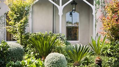 Luxurious sub-tropical Melbourne garden