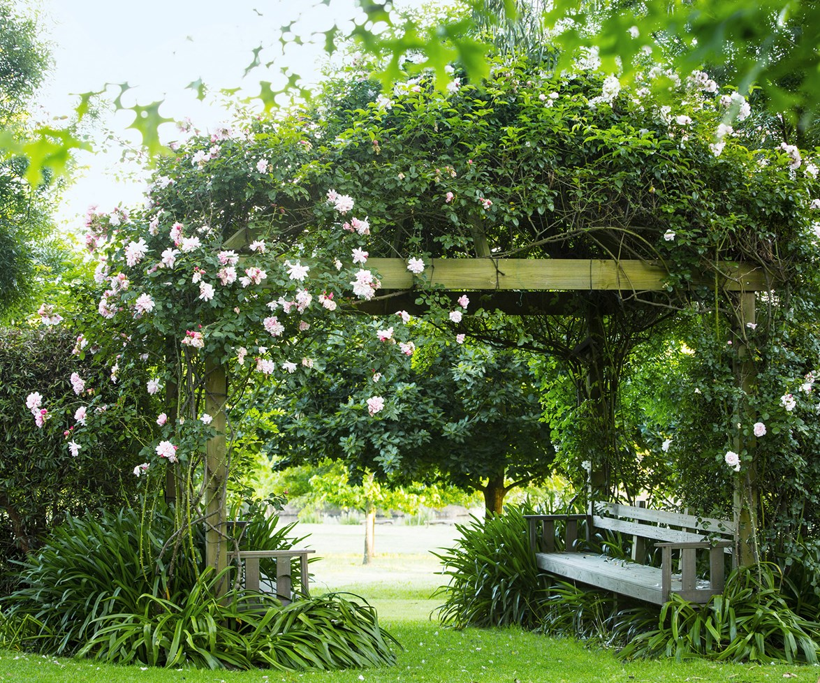 The best place to stop and smell the roses is beneath this luscious arbour in a [country garden on the Morning Peninsula](http://www.homestolove.com.au/gallery-jennys-picturesque-country-garden-1658). *Photo: Claire Takacs / Australian House & Garden*