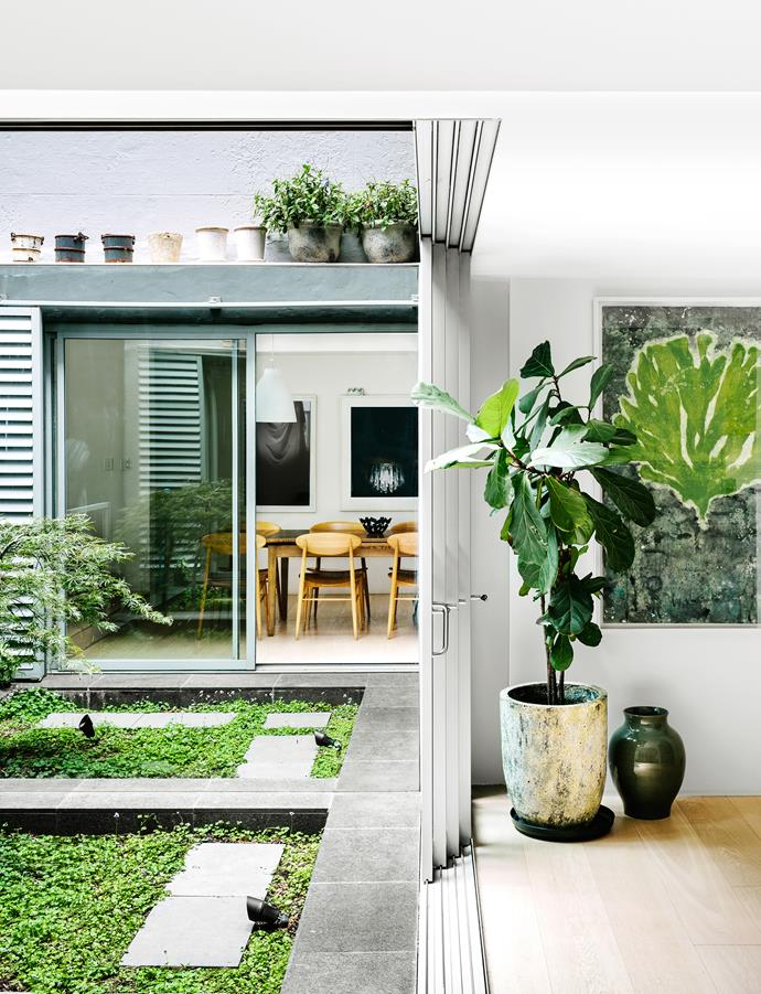 "A serene internal courtyard is directly connected to the home's social spaces. The green covered pond meshes visually with a Japanese maple and botanical artwork inside.   **Planter** from [Orson & Blake](http://www.orsonandblake.com.au/|target=""_blank""). **Artwork** by Chris de Rosa."