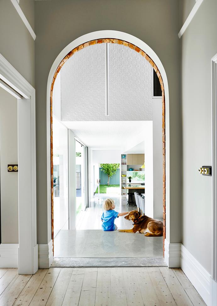 Jesse and kelpie-cross Joe sit beneath a period archway that marks the transition between the original and new parts of the home.