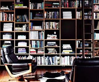 Contemporary library lounge
