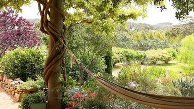 Summer lovin': Top tips for summer garden care