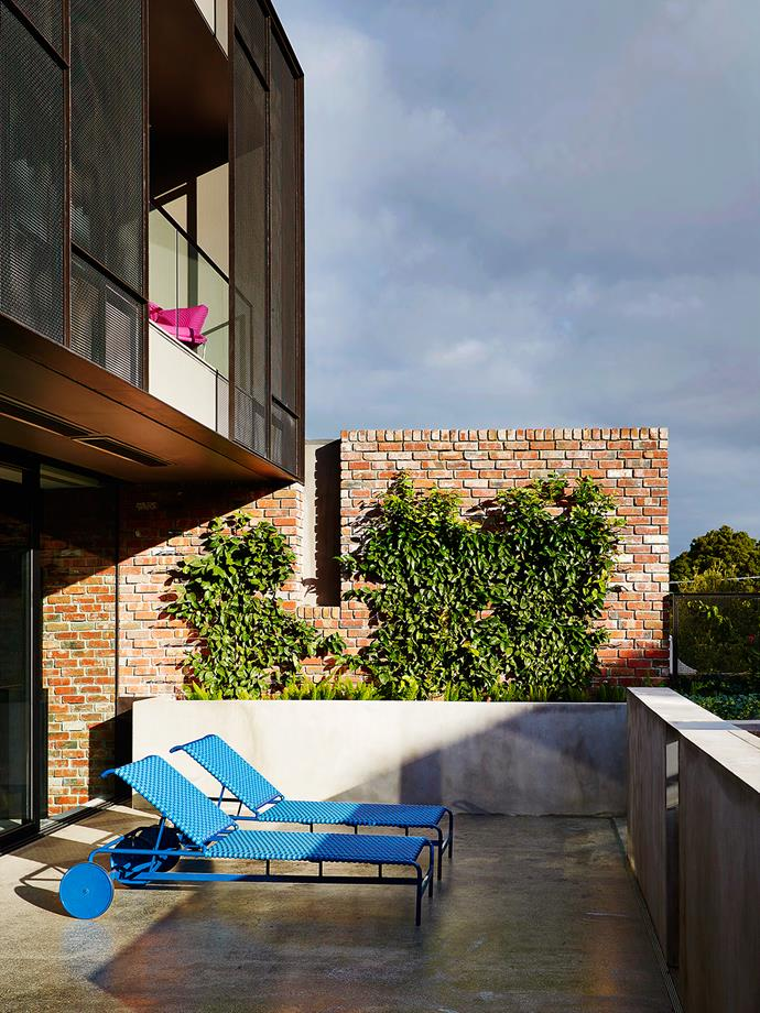 "The living room provides access to the concrete-clad north-facing terrace with views to the city. A pair of cornflower blue [Driade](http://www.driade.com/|target=""_blank"") Rimini sunbeds sit alongside a plunge pool and wall of greenery."
