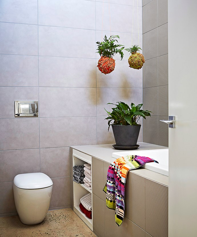Plant hangers are perfect when space is limited. They come in many different sizes, colours, lengths, thicknesses and patterns. Photo: Armelle Habib / bauersyndication.com.au