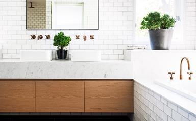 Indoor plants suitable for bathrooms