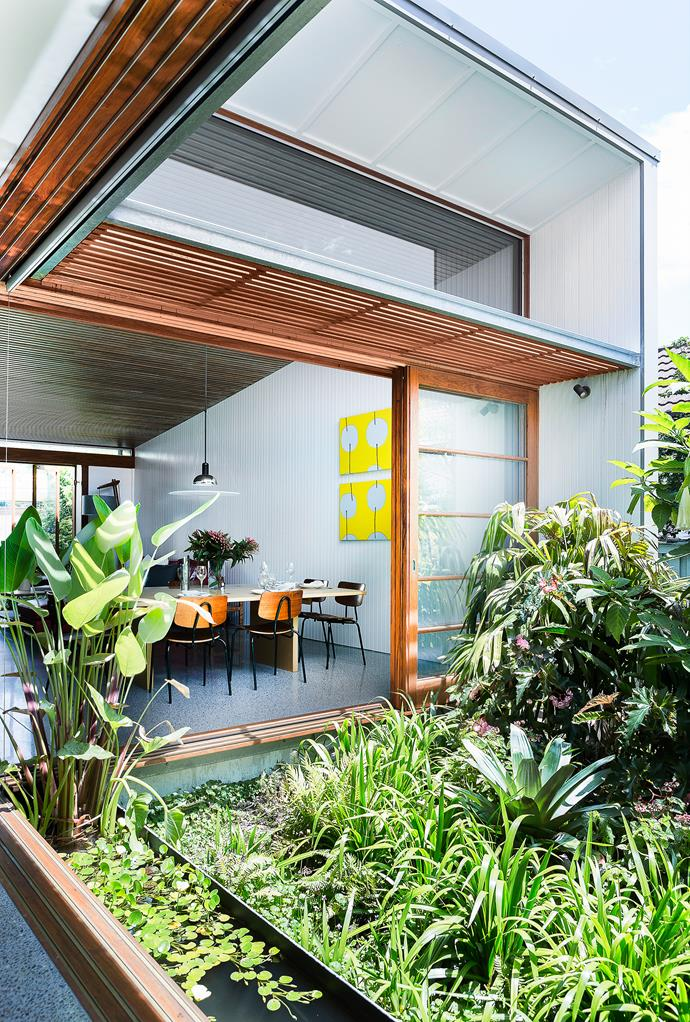 """""""Most people would have paved the courtyard and put in a table, chairs and umbrella, but we didn't want that,"""" says David of the internal green space.   **Landscaping** by Mark Paul from [The Greenwall Company](http://www.greenwall.com.au/