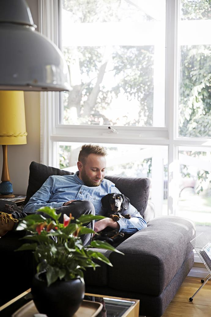 """Little Lewis the mini daschund snuggles up with his dad Jeremy in the living room of [his art-filled home](http://www.homestolove.com.au/gallery-carmen-and-jeremys-art-filled-abode-1834/