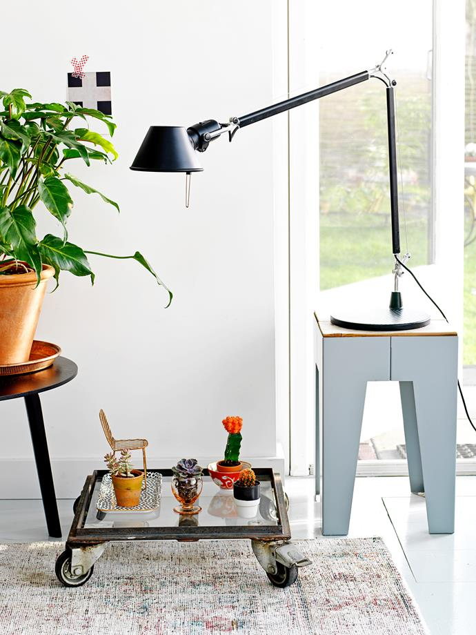 A leafy philodendron dresses up a side table, while a flowering cactus adds a flash of colour to the arrangement. Don't be shy about including a random object in the mix, like our miniature chair or stool.