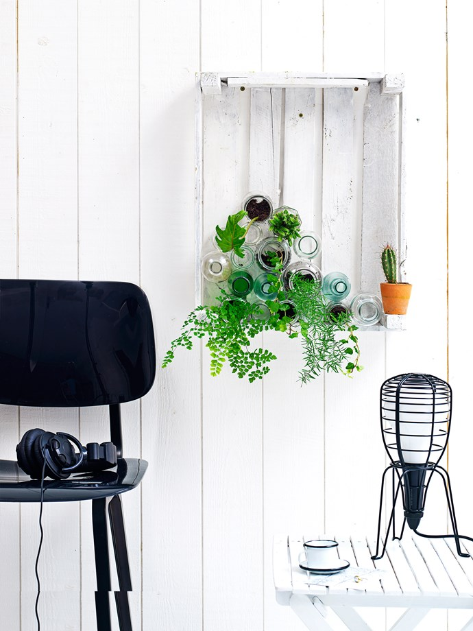 """From herbs and vegetables to ferns and succulents, each of these [indoor plants](http://www.homestolove.com.au/easy-being-green-cool-indoor-plant-ideas-1856 target=""""_blank"""") has different take-care-of-me needs."""