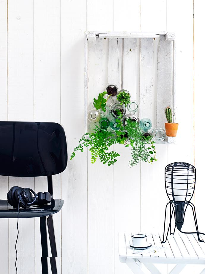 **Mini green wall:** Place soil and plants in jars and bottles, then stack on sides in a wall-hung, painted crate, securing with strong double-sided tape or sticky dots – try brands like Scotch, Sellotape or 3M. To water, simply spritz with a spray bottle. You can also include some empty vessels.