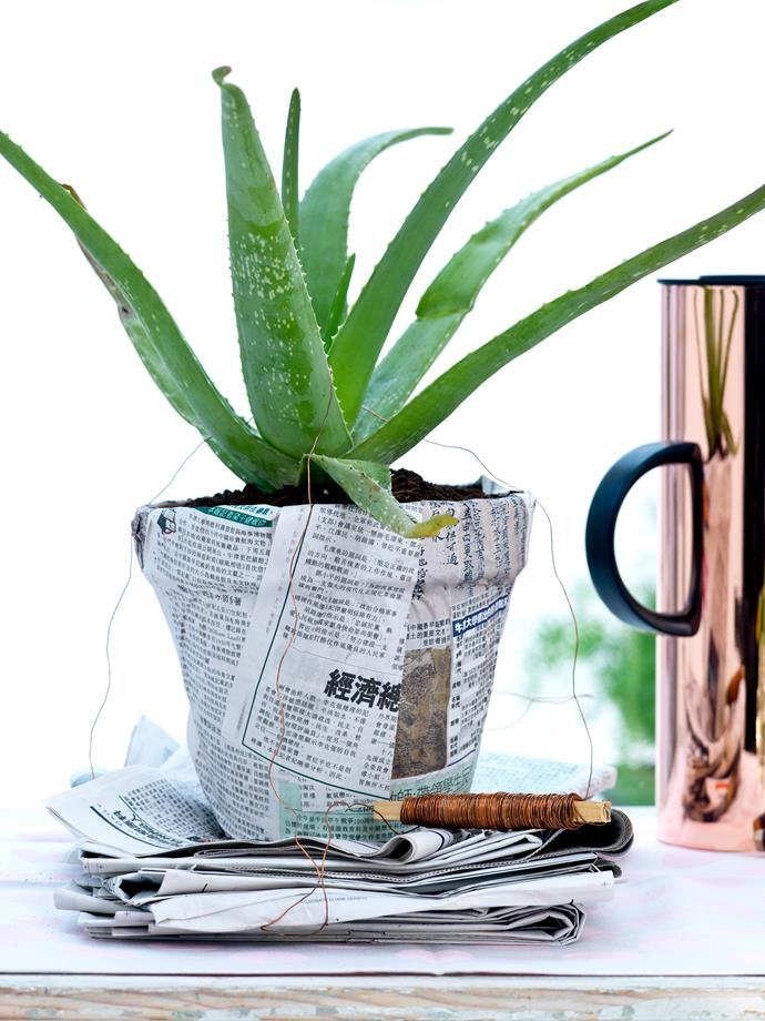 Terracotta is just the beginning – dress up your pots however you like. Try painting them or covering them in paper or fabric to give them a fresh new look.