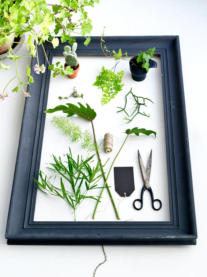 Don't restrict your display surfaces to floors, windowsills or shelves. Indoor plants can be displayed anywhere in the home: on tabletops, trays, bedside tables or in the bathroom.