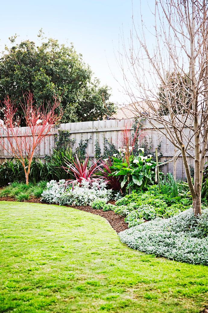 The once-overgrown garden is now a lush and welcoming haven in the big city.