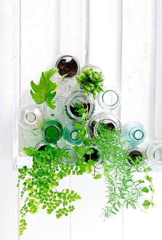 Stacked jar vertical garden
