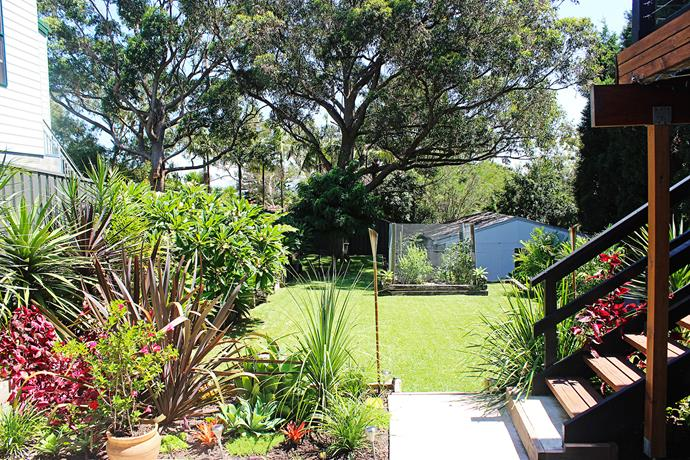 Lush tropical garden makeover