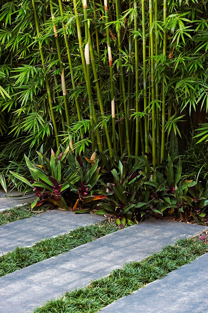 Wide steppers trimmed with bamboo can visually elongate a small space. Photo: Michael Wee / bauersyndication.com.au