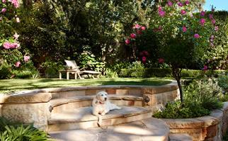 Formal garden terrace landscape
