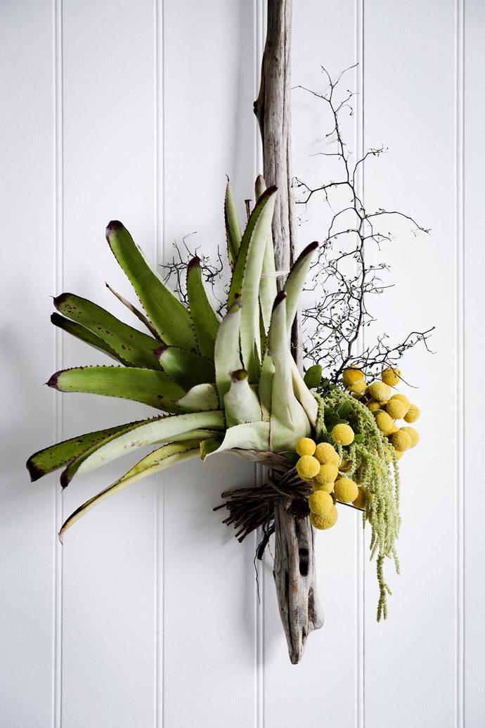 "Bromeliad installation from [Poho Flowers](http://www.pohoflowers.com.au/|target=""_blank"")."