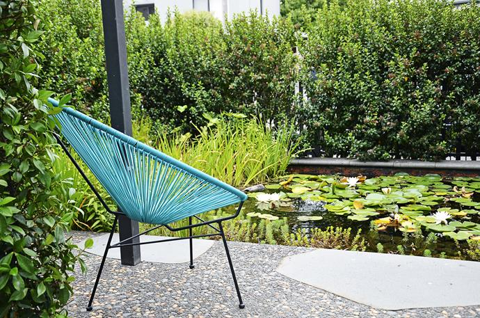 The lily pond stretches for four metres across the front of the property and is screened by an Escallonia hedge along the boundary.